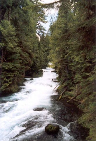 McKenzie River below Sahalie Falls